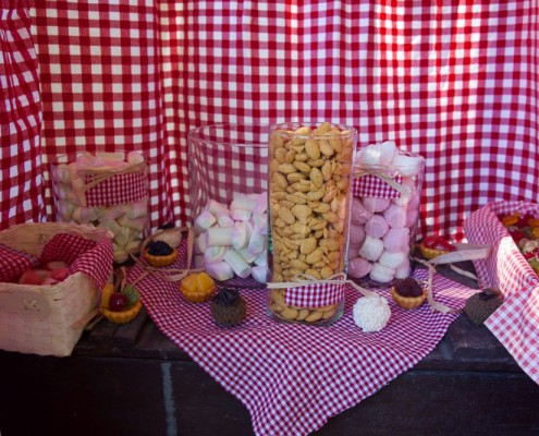 Pic Nic Party Teddy Bear